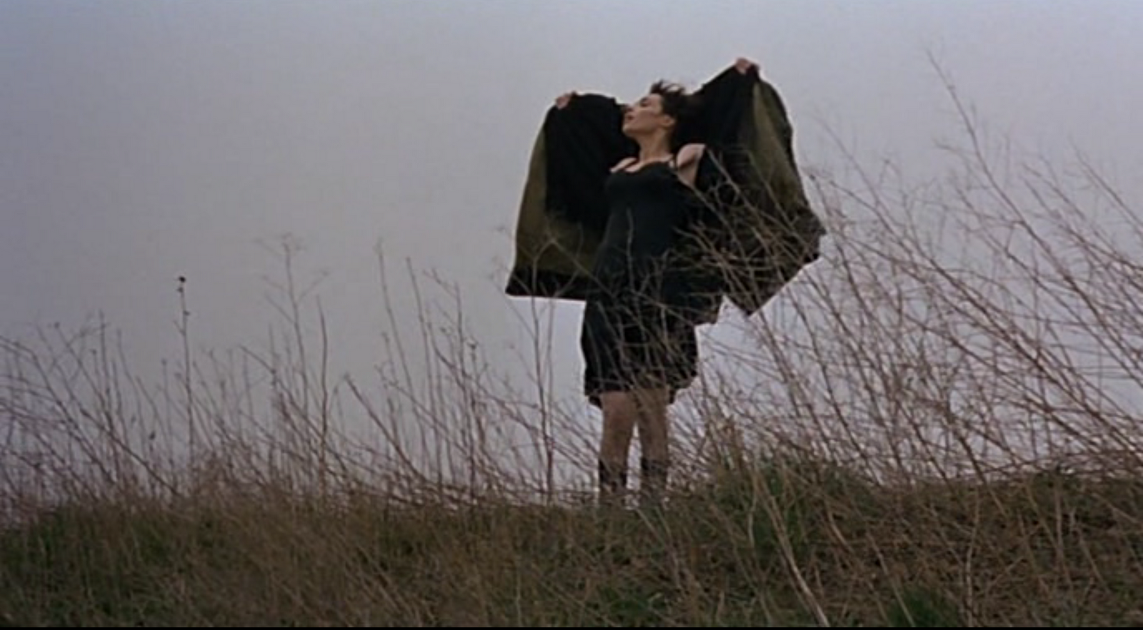 Movie-Trouble-every-day-Claire-Denis-Beatrice-Dalle-2001-www.lylybye.blogspot.com_9
