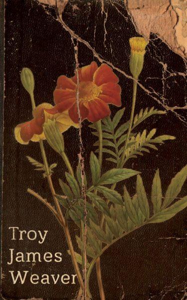 marigold-cover-300dpi